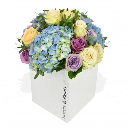 Parisian Blue £23.99
