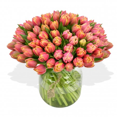 T is for Tulips £24.99