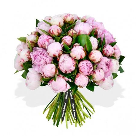Pink Peonies £21.99