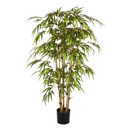 Bamboo £189.99