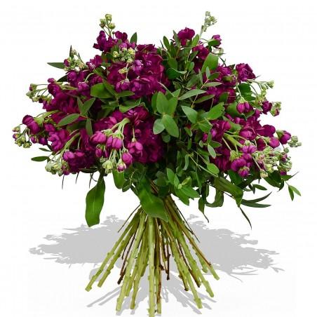 Purple Passion £42.99