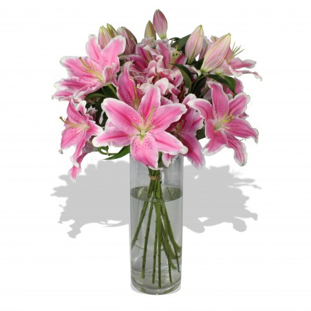 Lush Lilies £34.99