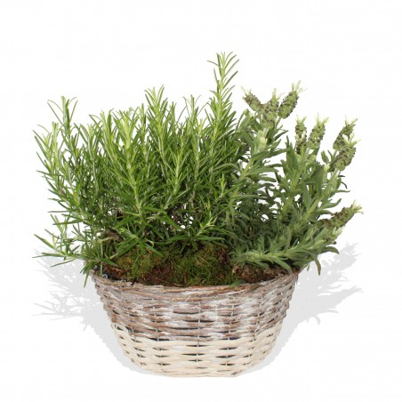 Herbal Basket £29.99