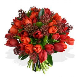 Tulips and Skimmia £21.99