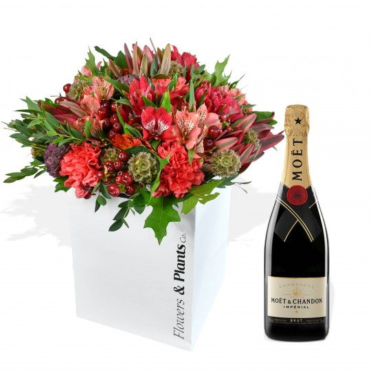 red flowers bouquet with champagne