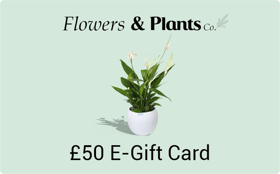 £50 plants gift card