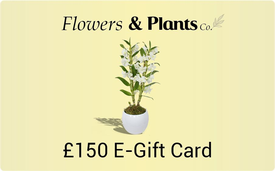 £150 plants gift card