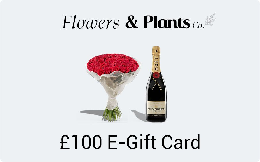 £100 flowers gift card