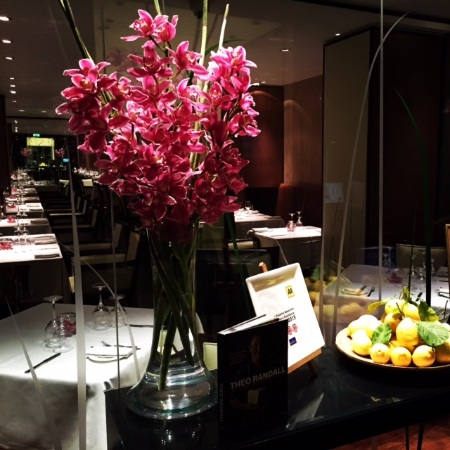 large orchids display for business