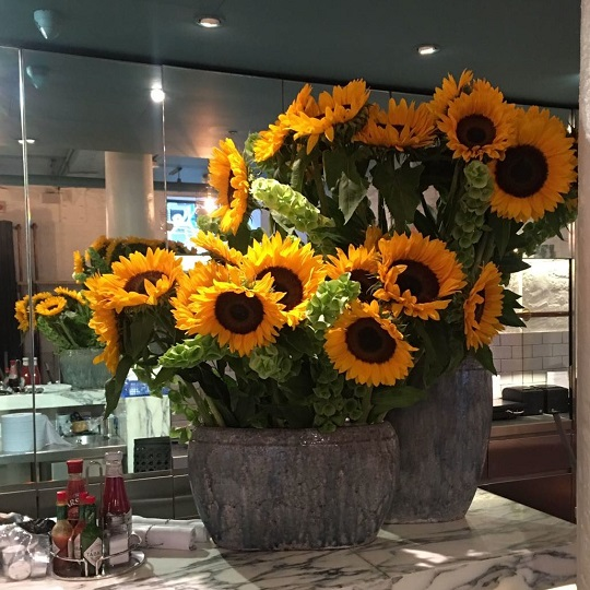 sunflowers floral display
