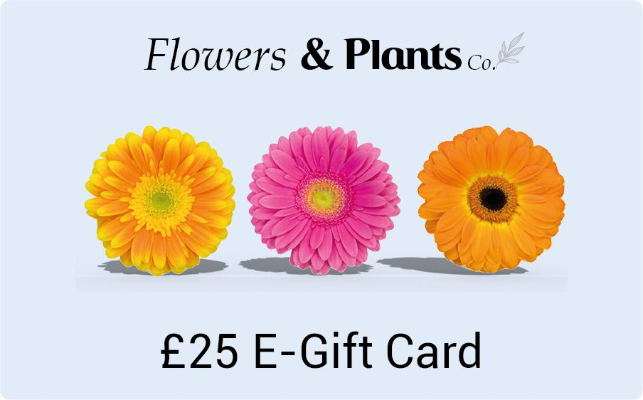 £25 flowers gift card