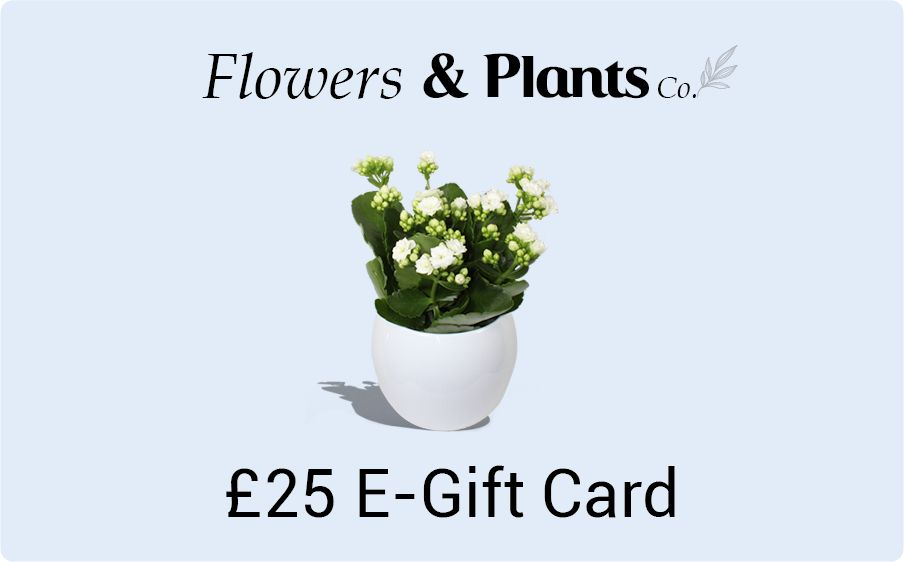 £25 plants gift card