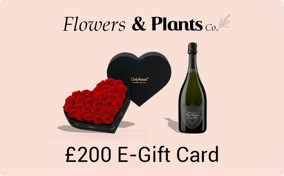 £200 flowers gift card