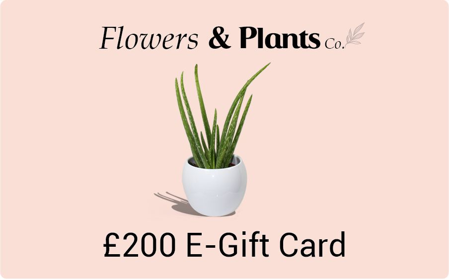 £200 plants gift card